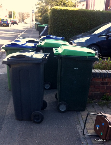 bins out for bin day